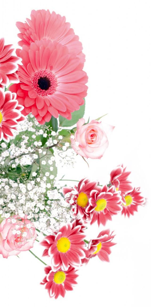 Blumen Bestattungshaus Schnee